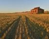 003-burra-homestead