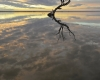 021-lake-bonney-sunrise