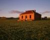 115-burra-homestead-green