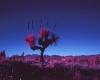 124-grass-tree-infrared