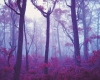 163-red-mist